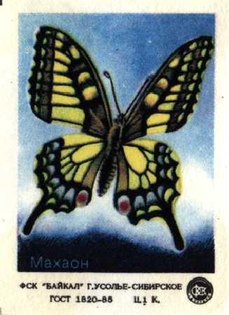 """Набор спичечных этикеток """"Бабочки"""""""
